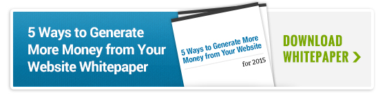 5 Ways to Generate More Money from Your Website Whitepaper