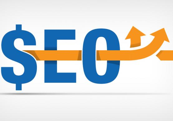 SEO Trends: What We're Seeing in 2014