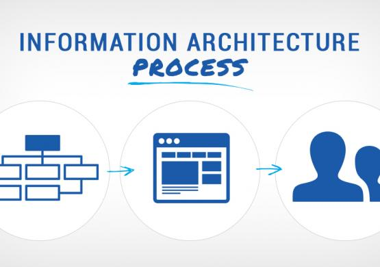 Information Architecture Process: How to Create the Best UX
